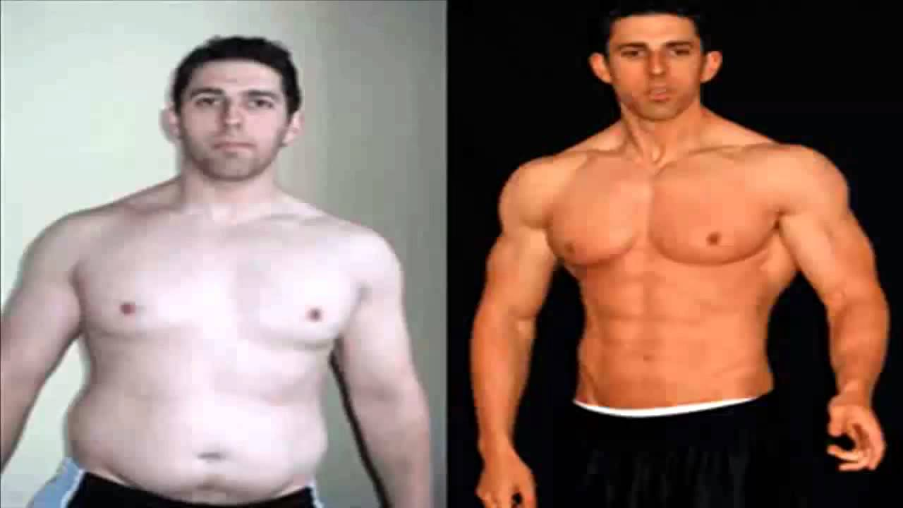 build muscle and lose fat on steroids