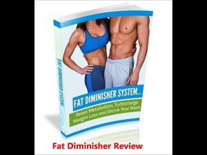 fat diminisher system page 33